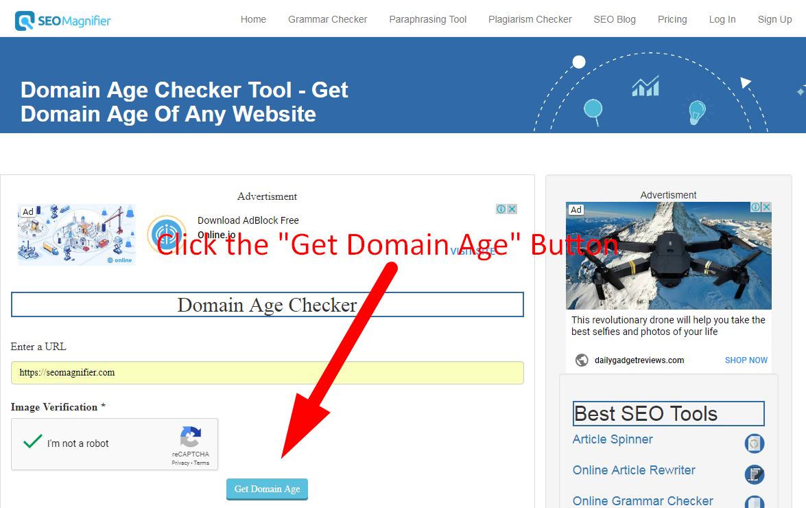how to check age of any website step 3