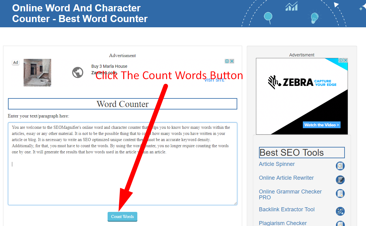 how to count word online using seo magnifier step 3