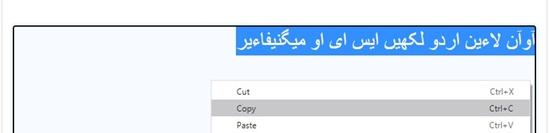 How to use urdu keyboard online step 4
