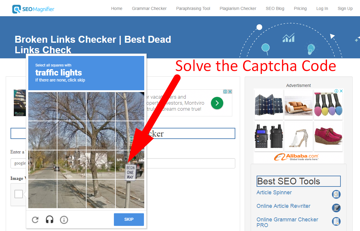 seo magnifier broken links checker using